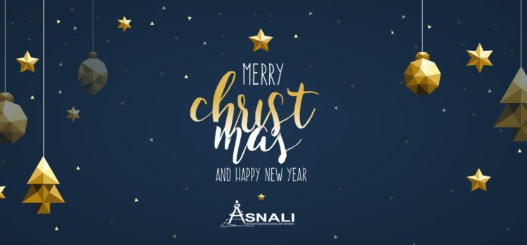 Buon Natale e Felice Anno Nuovo da AsNALI