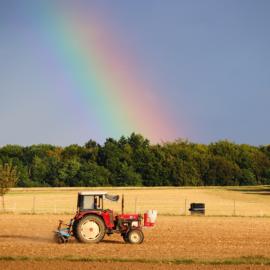 Bando ISI Agricoltura: pubblicati gli elenchi cronologici provvisori delle domande