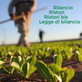 L'esonero contributivo per le filiere agricole