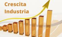 Istat: a giugno aumenta il fatturato dell'industria