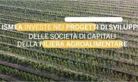 Ismea investe: sostegno ai progetti di sviluppo della filiera agroalimentare italiana