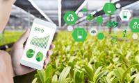 Fondo investimenti innovativi in Agricoltura